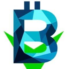 Blockchain Investment Group